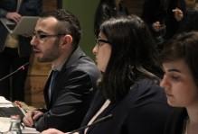 ISFED 2017 წლის ადგილობრივი თვითმმართველობის არჩევნების მონიტორინგის საბოლოო ანგარიშს აქვეყნებს