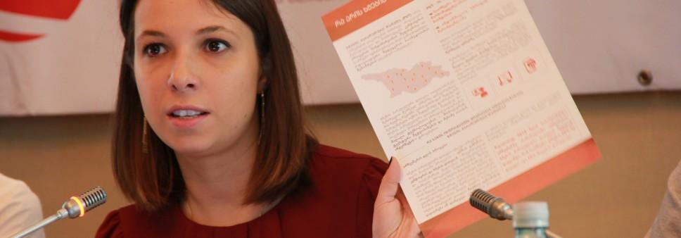 არჩევნების დღის სადამკვირვებლო მისიის პრეზენტაცია
